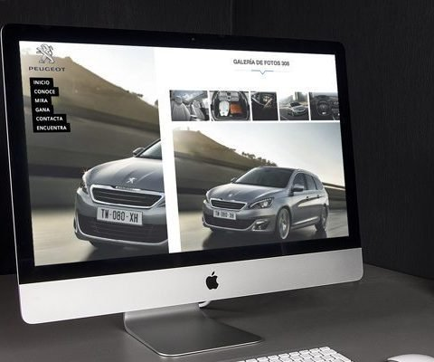 Diseño web, Peugeot Vitoria, primera