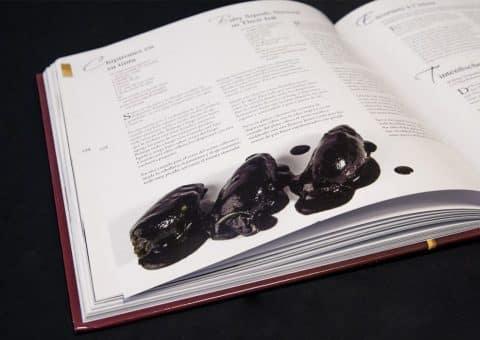 Diseño Gráfico y editorial del Libro 101 Tapas Los imprescindibles de la cocina española de Arzak 01