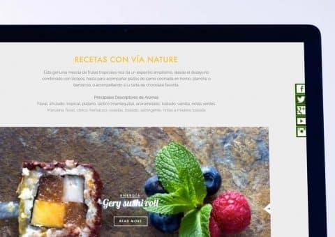 web de la página Via Nature detalle recetas.
