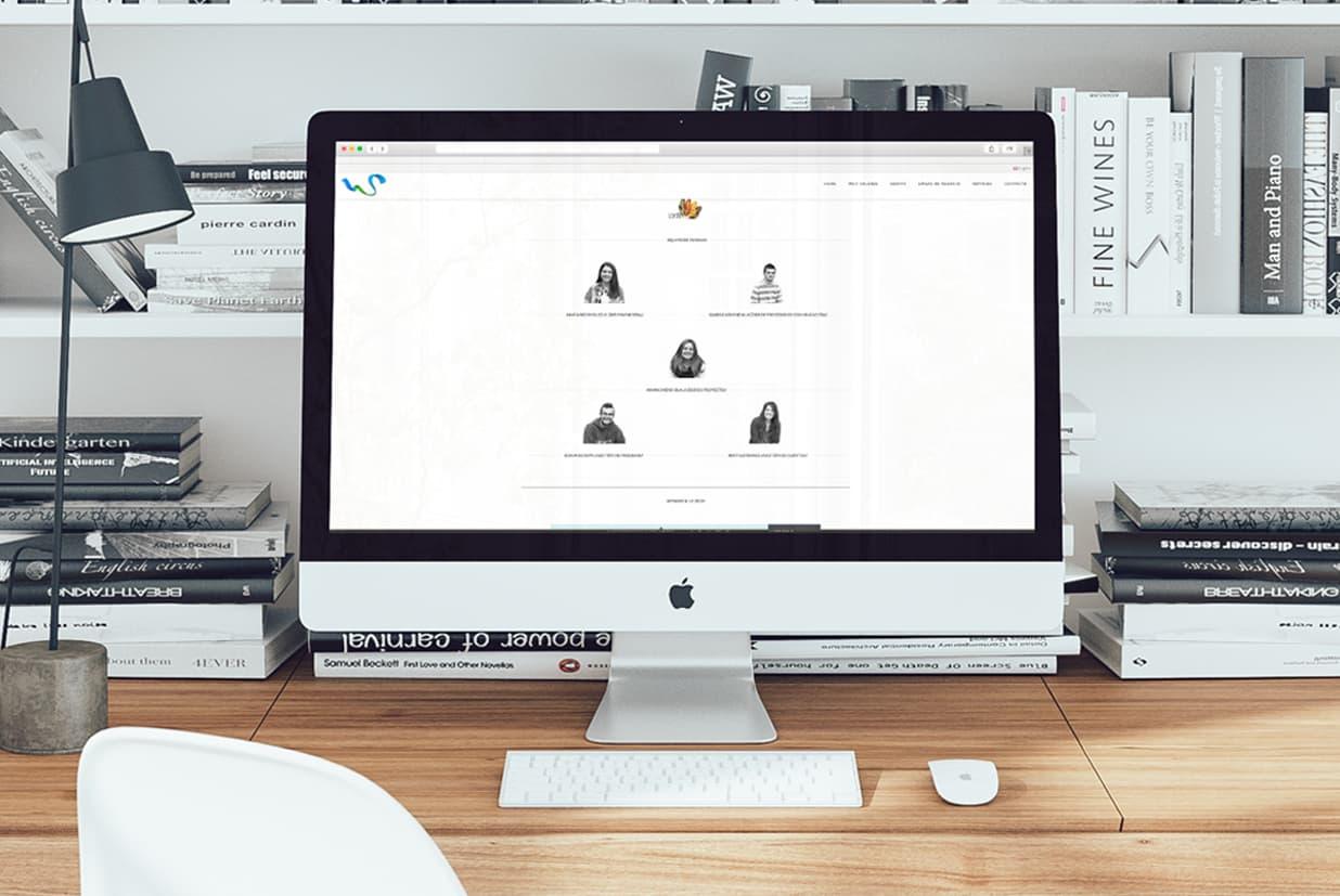 Diseño web de la página Sweifcoop detalle líneas de negocio.